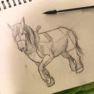61- Draft Horse Sketch