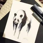 149- Panda