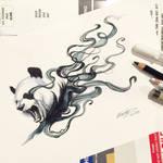 153- Disappearing Panda 2