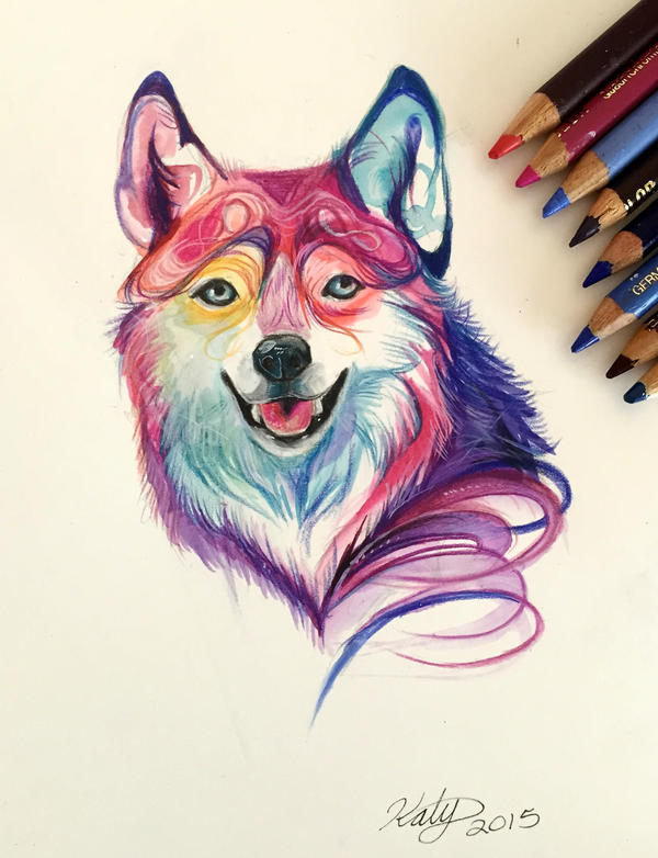 176- Colorful Wolf by Lucky978 on DeviantArt Colorful Wolf Painting