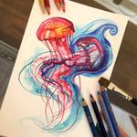 184- Jellyfish
