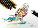 207- Barn Owl