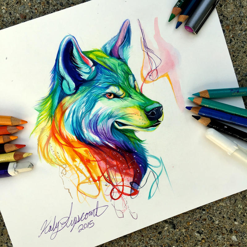214- Colorful Wolf by Lucky978 on DeviantArt Colorful Wolf Painting