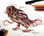 314- Melanistic Barn Owl