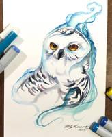 326- Snowy Owl by Lucky978