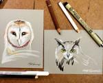 328- Barn and Eagle Owls