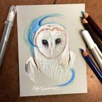 336- Mystic Barn Owl