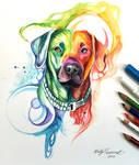 351- Rainbow Dog