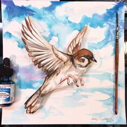 Sparrow Shadow Box