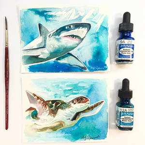 Shark and Sea Turtle Watercolor Minis