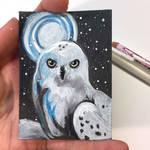 Snowy Owl ACEO