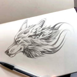 27- Wolf Sketch by Lucky978