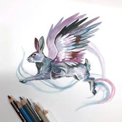 Photo Feb 16, 9 30 03 PM47: Flying Rabbit