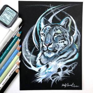 Day 92- Snow Leopard
