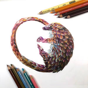 Day 93- Pangolin