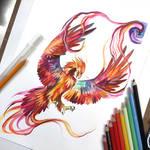 Day 97- Rainbow Phoenix