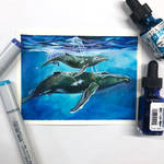 Day 142: Humpback Whales