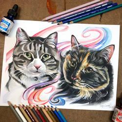 Day 170: Kitties