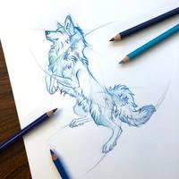 Day 185: Wolf Sketch
