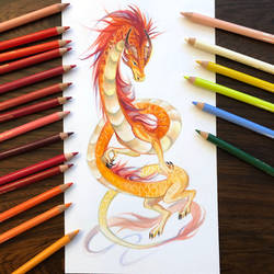 Day 190: Chinese Dragon