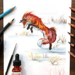Day 245: Jumping Red Fox