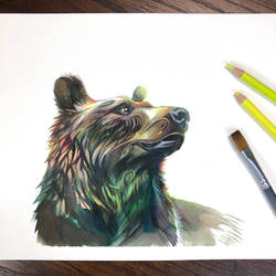 Day 263: Grizzy Bear