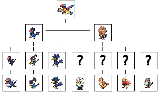 Pokemon Ducklett Evolution Images | Pokemon Images
