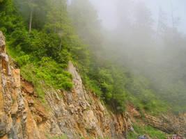 Fog by scarlett-mist