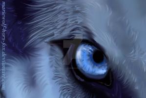 watch my eye by mariewolf-hors-fox