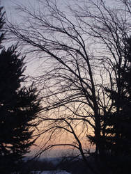 Soft Sunrise 3 by bunigrl