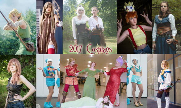 2017 cosplays