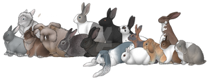 Old Rabbits of Lucky Lapine