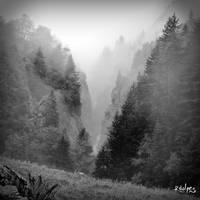 La gorge II by rdalpes