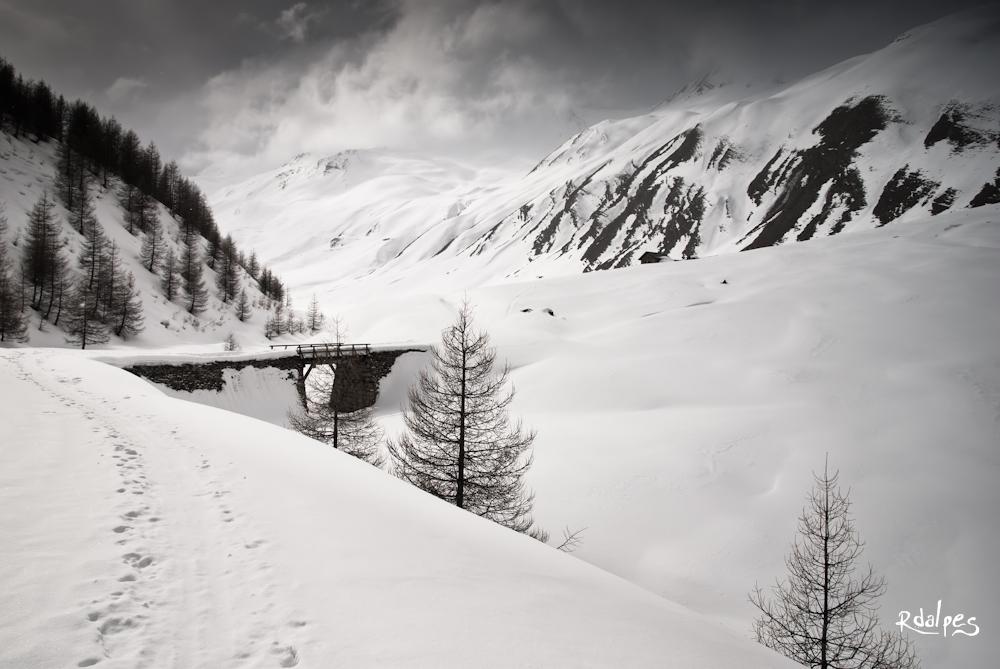 A bridge by rdalpes