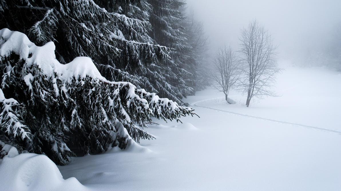 Ski touring by rdalpes