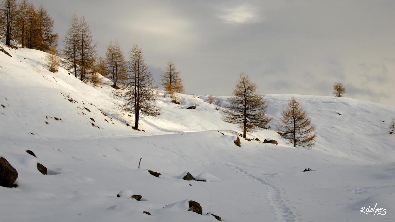 South Alps