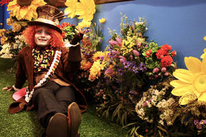 Tarrant Hightopp: In the Gardens of Memories