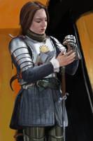 Warrior Woman 4 by rodmendez