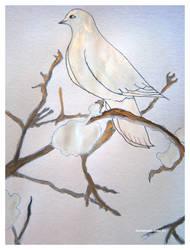 silver gold dove