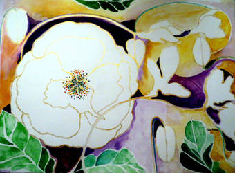 White Poppy for Peace by GeaAusten
