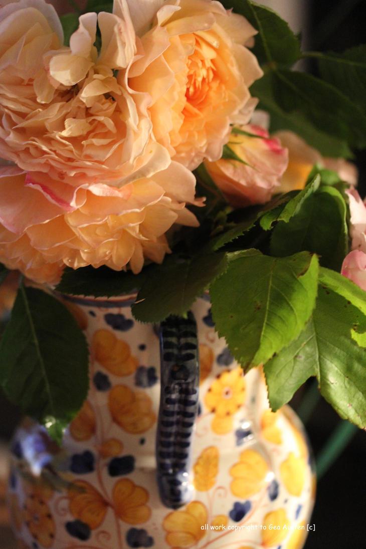Simply Roses by GeaAusten