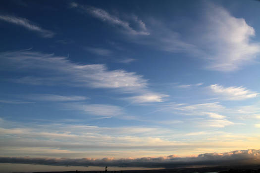 Feathery sky ,Cirrus clouds