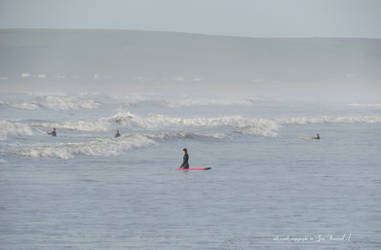 surfers and sea mist.. north devon