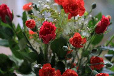 Roses and Carnations by GeaAusten