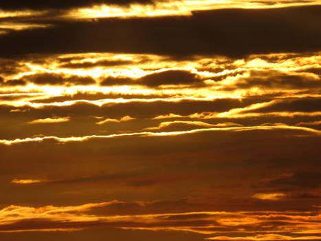 Golden Sky tonight