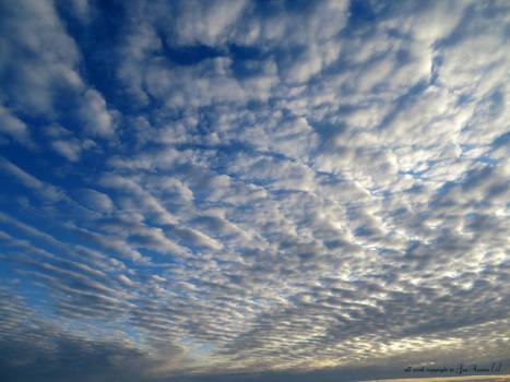 Skies North Devon