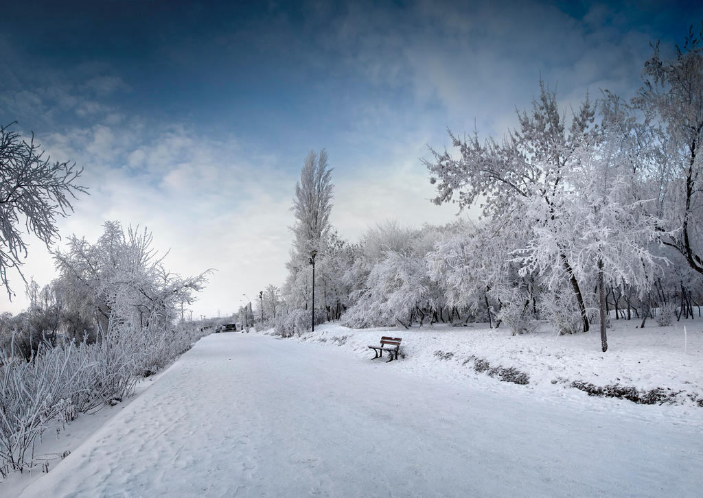 Winter 2011_2 by LCristian