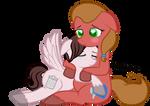 Cute horse snuggles