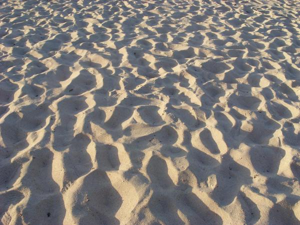 .sand in my shoes. by TehCrazyQuokka
