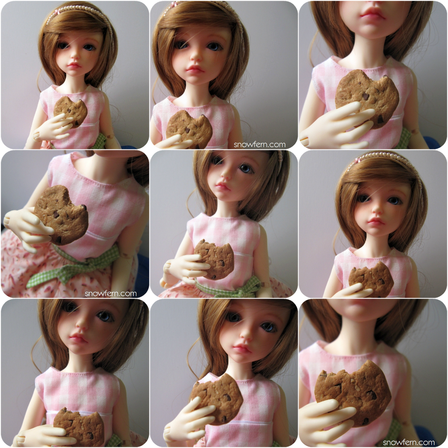 1:4 Chocolate Chip Cookies by Snowfern